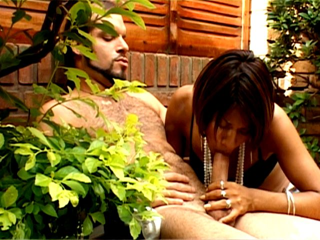 Brunette tranny hooker Mina sucking and jerking a monster phallus outdoors